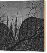 Valley Of Sticks Wood Print