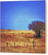 Valley San Carlos Arizona Wood Print
