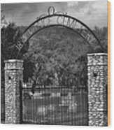 Vance Cemetery Black And White Wood Print