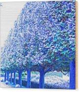 Vanishing Point Wood Print