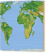 Vegetation Map -- Oval Projection Wood Print