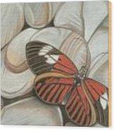 Velvet Red Wood Print