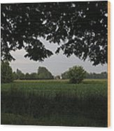 Veneto's Countryside In May Wood Print