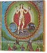 Venus Ruler Of Taurus And Libra Wood Print