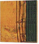 Verde Jaula Wood Print by Skip Hunt