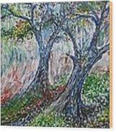 Verde Park Wood Print