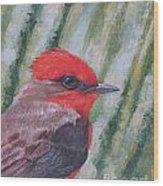 Vermillion Flycatcher Wood Print