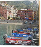 Vernazza's Harbor Wood Print