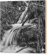 Vertical Falls Bw Wood Print