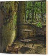 Vertigo Of Insanity  Wood Print by Heather  Boyd