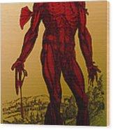 Vesalius De Humani Corporis Fabrica Wood Print
