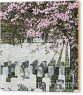 Veterans National Cemetery Wood Print