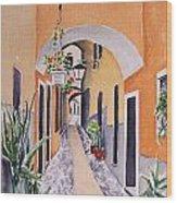 Via Grimaldi Saleri Wood Print by Regina Ammerman