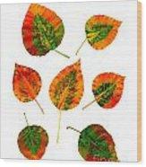 Vibrant Autumn Leaves Wood Print