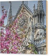 Vibrant Cathedral Wood Print