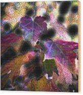 Vibrant Fall Wood Print