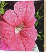 Vibrant Petunias Wood Print