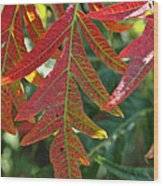 Vibrant Veins Wood Print