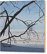 Victoria Beach Winter Wood Print