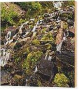 Vidae Falls Wood Print