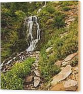 Vidae Falls Landscape Wood Print