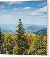 View Along The Highland Scenic Highway Wood Print