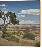 View From A Mesa Wood Print