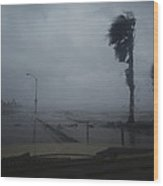 View From A Vehicle Of Hurricane Allen Wood Print