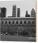 View From Bryant Park Nyc Wood Print