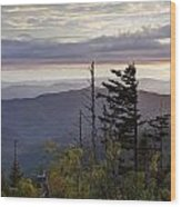 View From Clingmans Dome 4 Wood Print