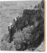 View From Grand Canyon Village Wood Print