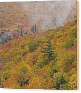 View From North Mountain Look-off Wood Print