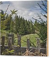 View From Picket Fence Wood Print