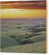 View From The Cypress Hills Wood Print