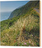 View From The Pacific Coastal Highway Wood Print by Steven Ainsworth