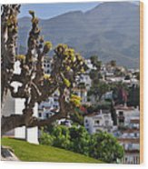 View From The Parador Nerja Wood Print