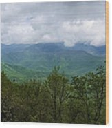 View From The Parkway Wood Print