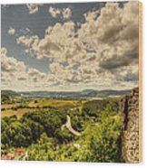 View From The Ruins Wood Print