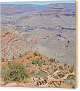 View From The South Kaibab Trail II Wood Print
