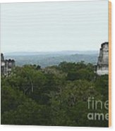 View From The Top Of The World Wood Print