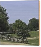View Of Appomattox Courthouse 2 Wood Print by Teresa Mucha