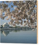 View Of Cherry Blossoms Wood Print