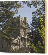 View Of Gillette Castle Wood Print