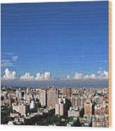 View Of Kaohsiung City Wood Print