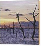 View Of Lake Kariba At Sunset Wood Print