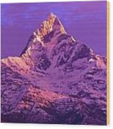 View Of Machhapuchhare At Sunrise From Wood Print