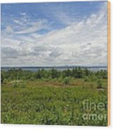 View Of Maine Bay Wood Print