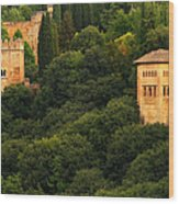 View Of The Alhambra In Spain Wood Print