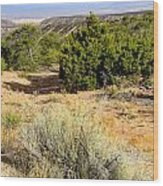 View Of The Desert New Mexico Wood Print