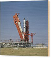 View Of The Gemini-titan 4 Spacecraft Wood Print